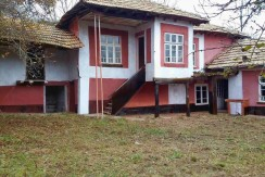 Honey Bee Home for sale near Popovo RUS1567