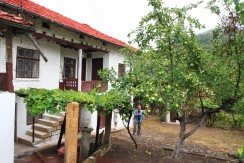 Bulgarian Country House for sale