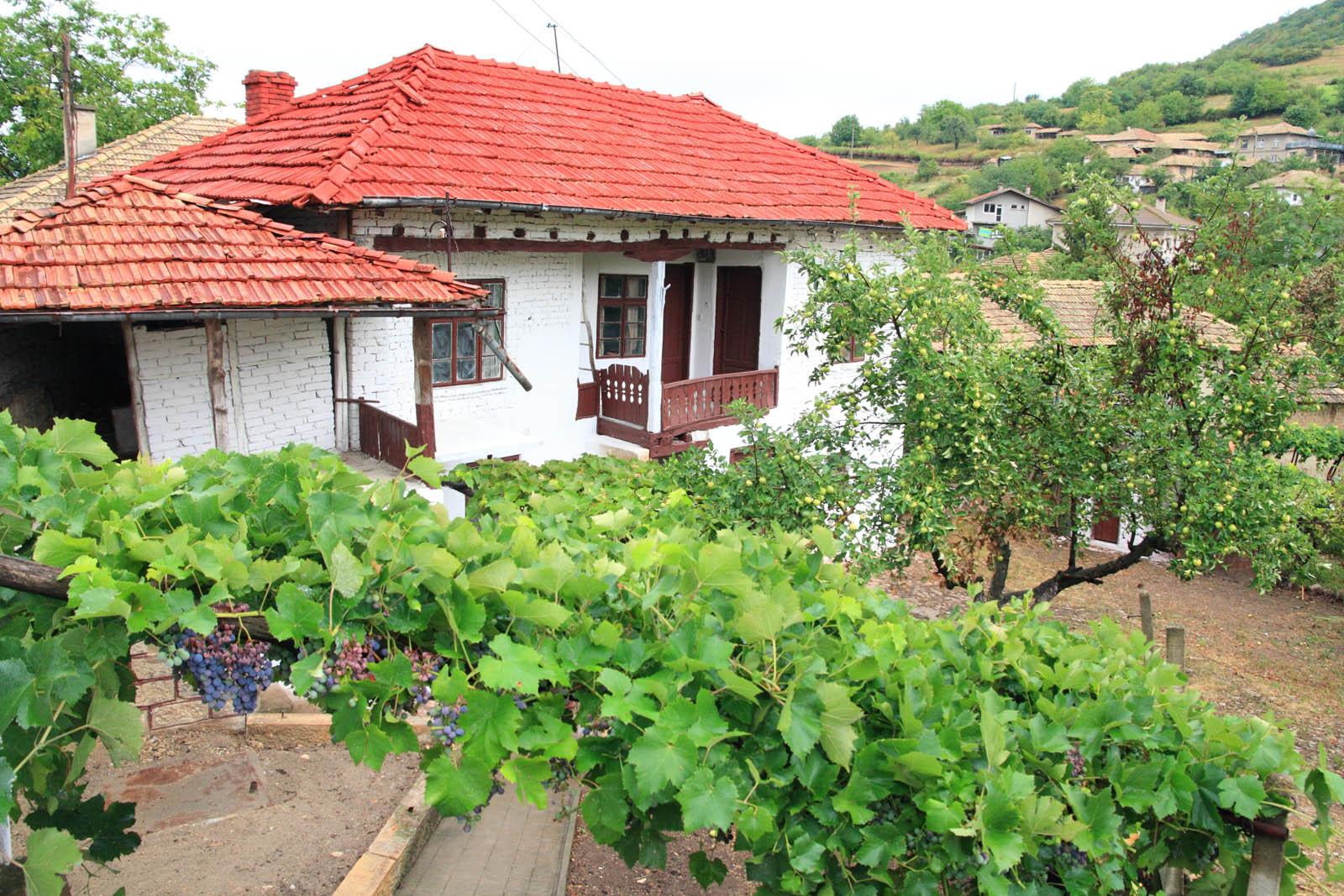 Mountain View House in Bulgaria ARUS2405