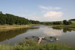 Lake near the village
