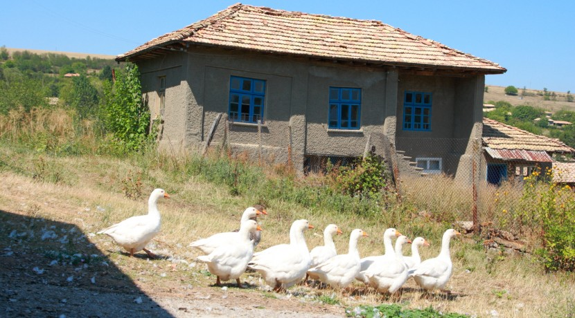 Bulgarian Property for sale0004