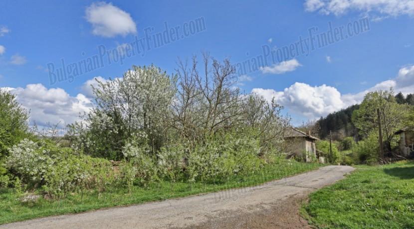 Bulgaria house for sale 1001