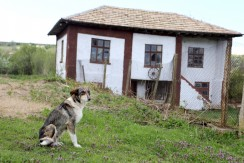 Bulgaria house for sale 1033
