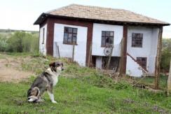 Bulgaria house for sale 1033